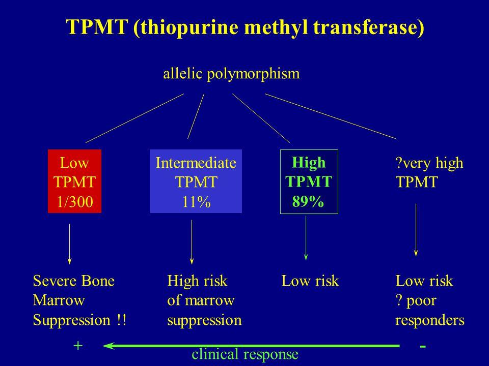 TPMT (thiopurine methyl transferase) allelic polymorphism High TPMT 89% Intermediate TPMT 11% Low TPMT 1/300 very high TPMT Severe Bone Marrow Suppression !.