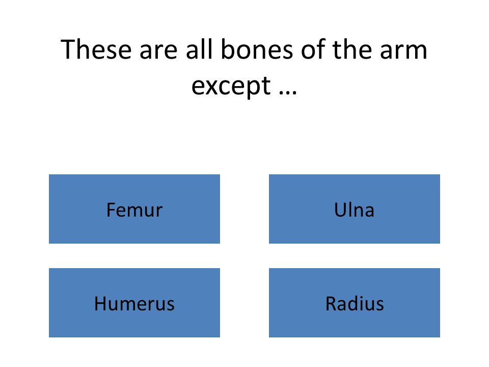 These are all bones of the arm except … FemurUlna HumerusRadius