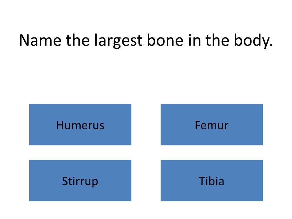 Name the largest bone in the body. HumerusFemur StirrupTibia