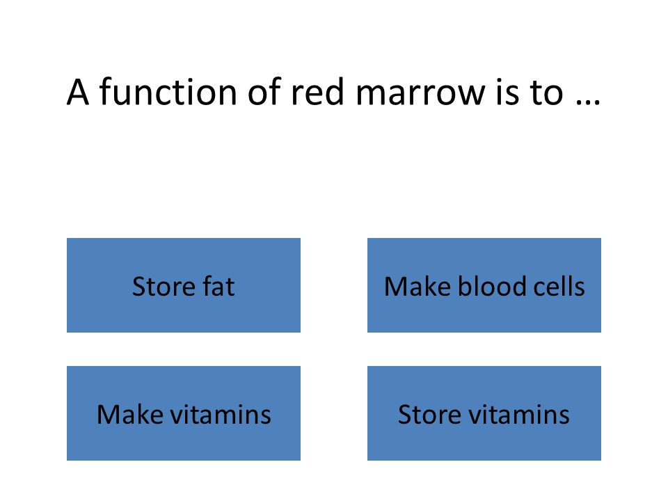 A function of red marrow is to … Store fatMake blood cells Make vitaminsStore vitamins