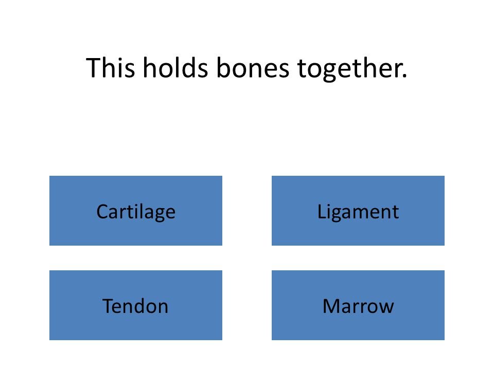 This holds bones together. CartilageLigament TendonMarrow