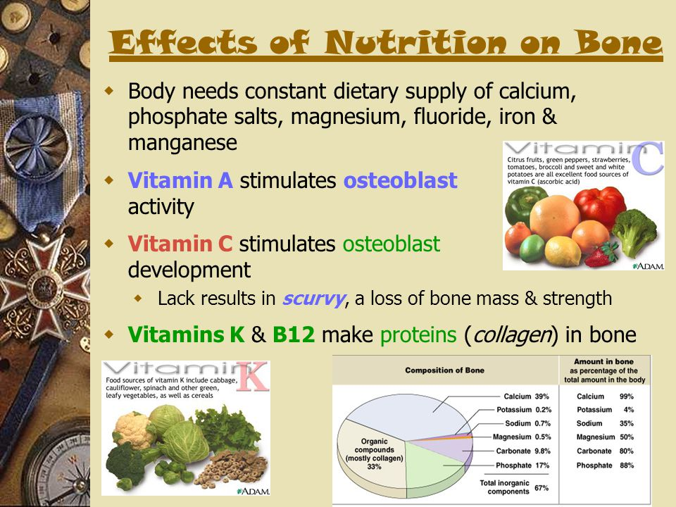 Effects of Nutrition on Bone  Body needs constant dietary supply of calcium, phosphate salts, magnesium, fluoride, iron & manganese  Vitamin A stimu