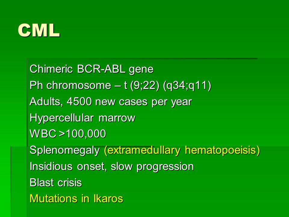 CML Chimeric BCR-ABL gene Ph chromosome – t (9;22) (q34;q11) Adults, 4500 new cases per year Hypercellular marrow WBC >100,000 Splenomegaly (extramedu