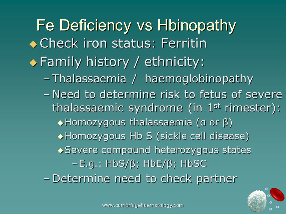 www.cambridgehaematology.com Fe Deficiency vs Hbinopathy  Check iron status: Ferritin  Family history / ethnicity: –Thalassaemia / haemoglobinopathy –Need to determine risk to fetus of severe thalassaemic syndrome (in 1 st rimester):  Homozygous thalassaemia (α or β)  Homozygous Hb S (sickle cell disease)  Severe compound heterozygous states –E.g.: HbS/β; HbE/β; HbSC –Determine need to check partner