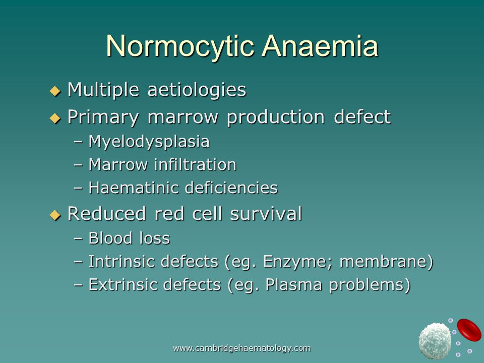 www.cambridgehaematology.com Normocytic Anaemia  Multiple aetiologies  Primary marrow production defect –Myelodysplasia –Marrow infiltration –Haematinic deficiencies  Reduced red cell survival –Blood loss –Intrinsic defects (eg.
