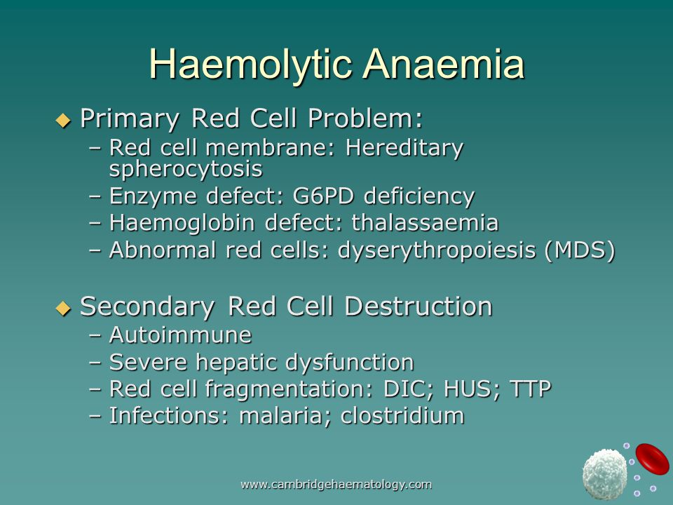 www.cambridgehaematology.com Haemolytic Anaemia  Primary Red Cell Problem: –Red cell membrane: Hereditary spherocytosis –Enzyme defect: G6PD deficiency –Haemoglobin defect: thalassaemia –Abnormal red cells: dyserythropoiesis (MDS)  Secondary Red Cell Destruction –Autoimmune –Severe hepatic dysfunction –Red cell fragmentation: DIC; HUS; TTP –Infections: malaria; clostridium