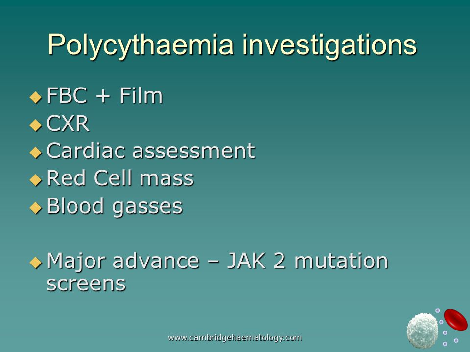 www.cambridgehaematology.com Polycythaemia investigations  FBC + Film  CXR  Cardiac assessment  Red Cell mass  Blood gasses  Major advance – JAK 2 mutation screens