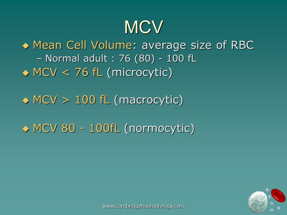 www.cambridgehaematology.com MCV  Mean Cell Volume: average size of RBC –Normal adult : 76 (80) - 100 fL  MCV < 76 fL (microcytic)  MCV > 100 fL (macrocytic)  MCV 80 - 100fL (normocytic)