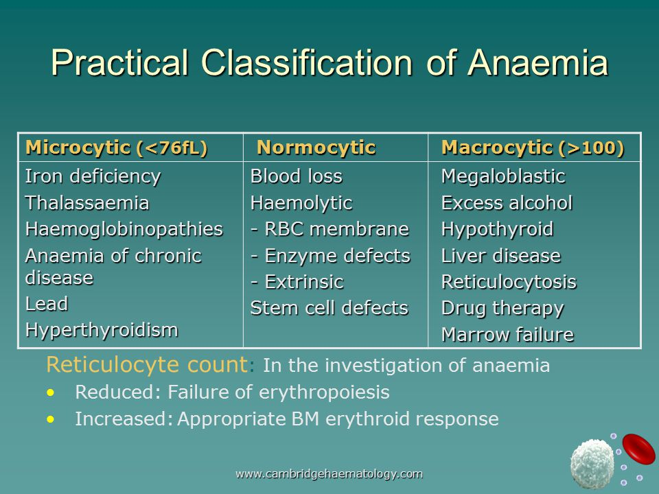 www.cambridgehaematology.com Practical Classification of Anaemia Microcytic (<76fL) Normocytic Normocytic Macrocytic (>100) Macrocytic (>100) Iron deficiency ThalassaemiaHaemoglobinopathies Anaemia of chronic disease LeadHyperthyroidism Blood loss Haemolytic - RBC membrane - Enzyme defects - Extrinsic Stem cell defects Megaloblastic Megaloblastic Excess alcohol Excess alcohol Hypothyroid Hypothyroid Liver disease Liver disease Reticulocytosis Reticulocytosis Drug therapy Drug therapy Marrow failure Marrow failure Reticulocyte count : In the investigation of anaemia Reduced: Failure of erythropoiesis Increased:Appropriate BM erythroid response