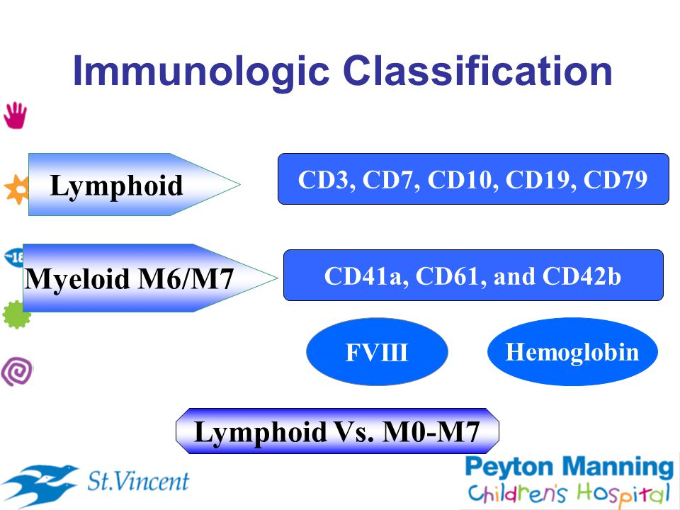 Immunologic Classification CD3, CD7, CD10, CD19, CD79 Lymphoid Myeloid M6/M7 CD41a, CD61, and CD42b FVIIIHemoglobin Lymphoid Vs.
