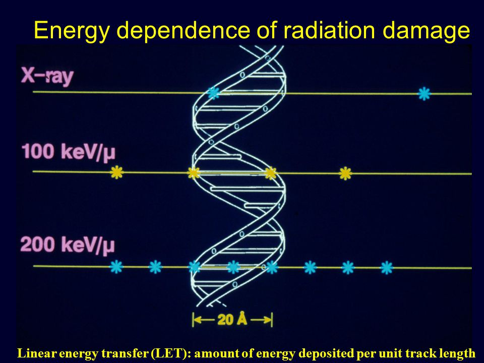 Linear energy transfer (LET): amount of energy deposited per unit track length Energy dependence of radiation damage