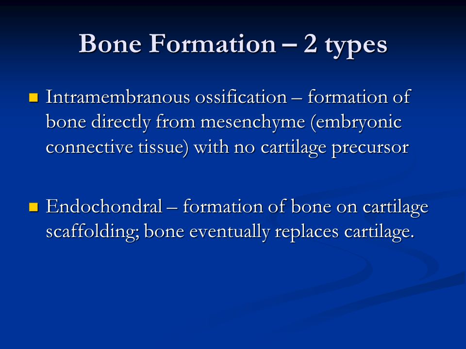 Bone Formation – 2 types Intramembranous ossification – formation of bone directly from mesenchyme (embryonic connective tissue) with no cartilage precursor Intramembranous ossification – formation of bone directly from mesenchyme (embryonic connective tissue) with no cartilage precursor Endochondral – formation of bone on cartilage scaffolding; bone eventually replaces cartilage.