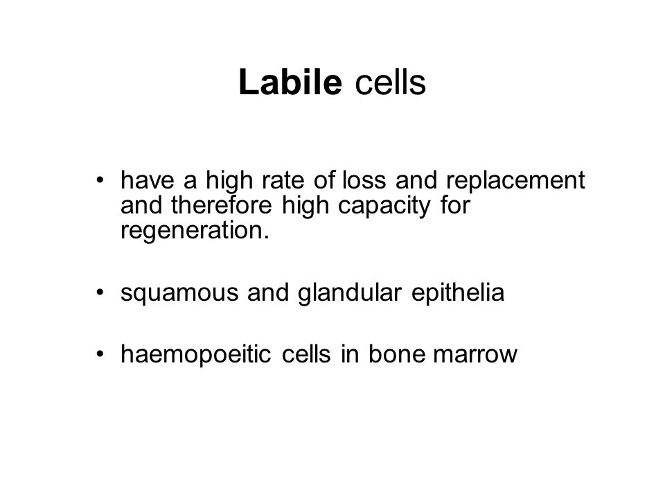 Labile cells have a high rate of loss and replacement and therefore high capacity for regeneration.