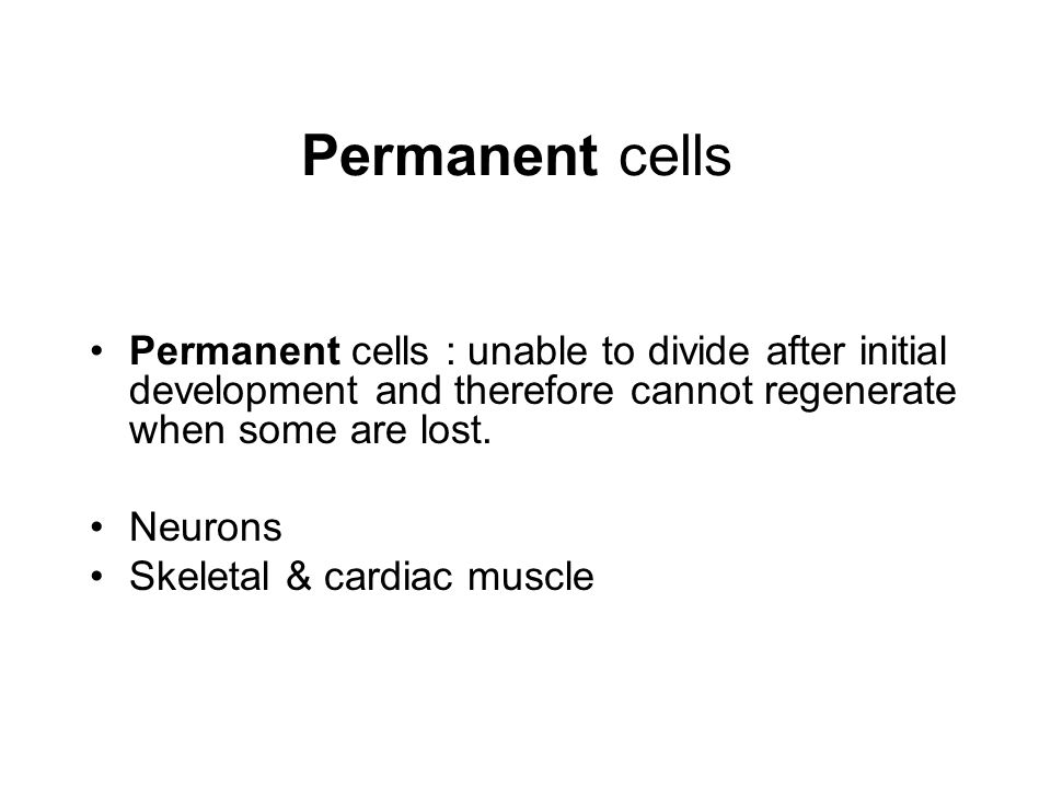 Permanent cells Permanent cells : unable to divide after initial development and therefore cannot regenerate when some are lost.