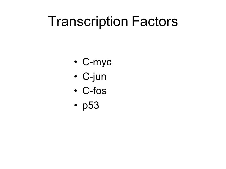 Transcription Factors C-myc C-jun C-fos p53