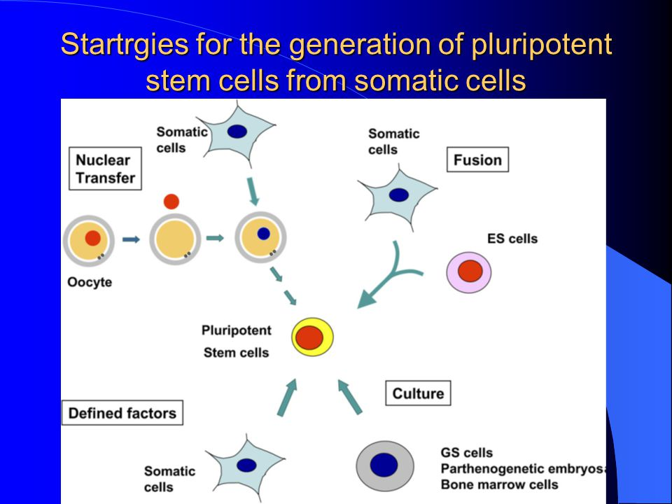 Startrgies for the generation of pluripotent stem cells from somatic cells