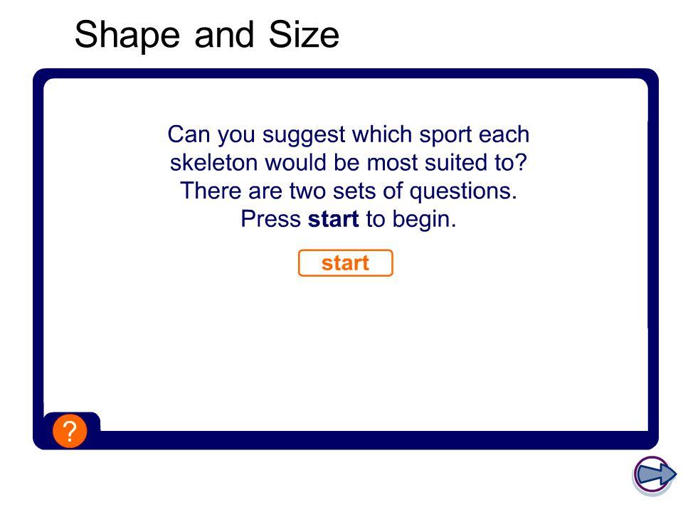 Classification of bones – short bones Short bones are very light and very strong.