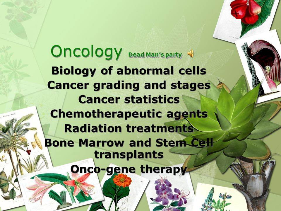 Oncology Objectives 1.Identify the different phases of cancer cell replication.
