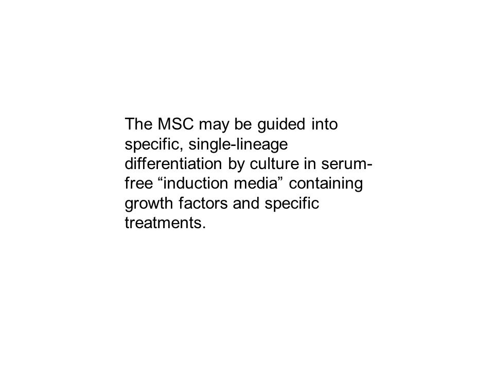 The MSC may be guided into specific, single-lineage differentiation by culture in serum- free induction media containing growth factors and specific treatments.