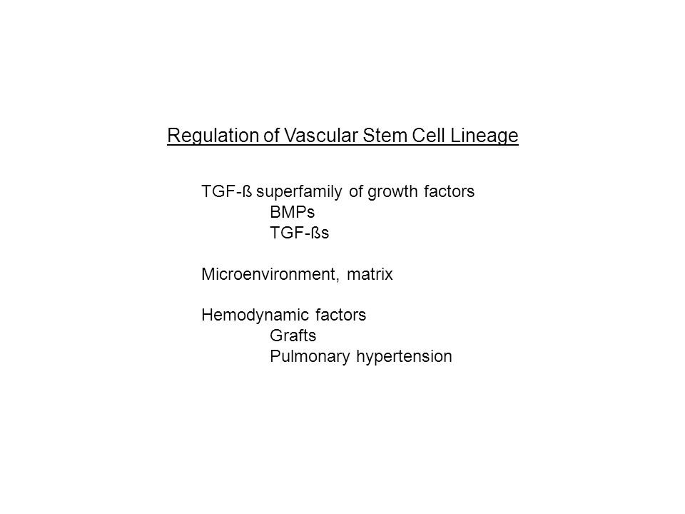 Regulation of Vascular Stem Cell Lineage TGF-ß superfamily of growth factors BMPs TGF-ßs Microenvironment, matrix Hemodynamic factors Grafts Pulmonary hypertension