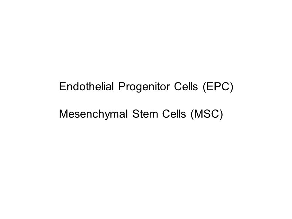 Endothelial Progenitor Cells (EPC) Mesenchymal Stem Cells (MSC)