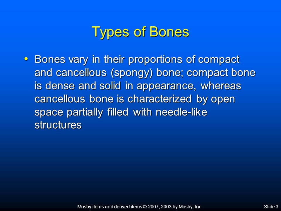 Mosby items and derived items © 2007, 2003 by Mosby, Inc.Slide 14 Microscopic Structure of the Bone Compact bone (cont.) Compact bone (cont.)  Four types of structures make up each osteon: Lamella—concentric, cylinder-shaped layers of calcified matrix Lamella—concentric, cylinder-shaped layers of calcified matrix Lacunae—small spaces containing tissue fluid in which bone cells are located between hard layers of the lamella Lacunae—small spaces containing tissue fluid in which bone cells are located between hard layers of the lamella Canaliculi—ultrasmall canals radiating in all directions from the lacunae and connecting them to each other and to the Haversian canal Canaliculi—ultrasmall canals radiating in all directions from the lacunae and connecting them to each other and to the Haversian canal Haversian canal—extends lengthwise through the center of each osteon and contains blood vessels and lymphatic vessels Haversian canal—extends lengthwise through the center of each osteon and contains blood vessels and lymphatic vessels