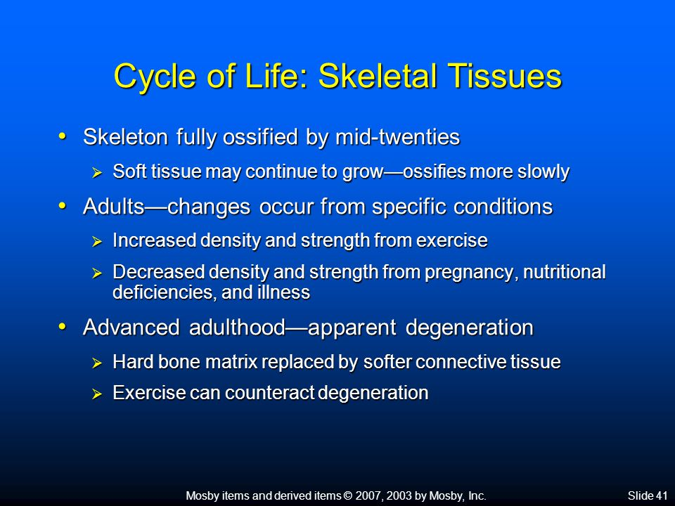 Mosby items and derived items © 2007, 2003 by Mosby, Inc.Slide 41 Cycle of Life: Skeletal Tissues Skeleton fully ossified by mid-twenties Skeleton ful