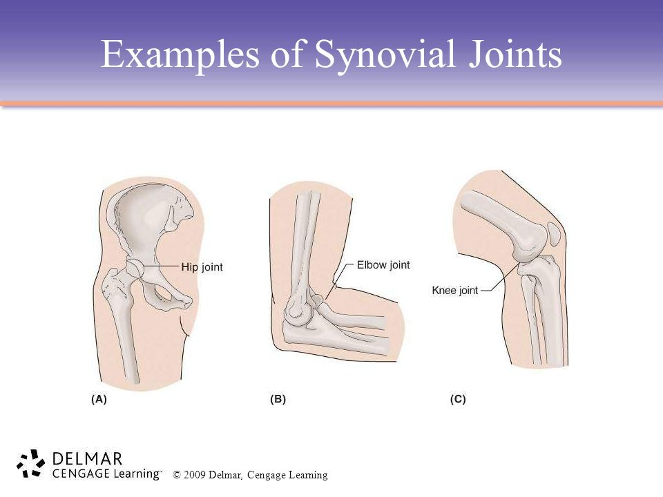 © 2009 Delmar, Cengage Learning Examples of Synovial Joints