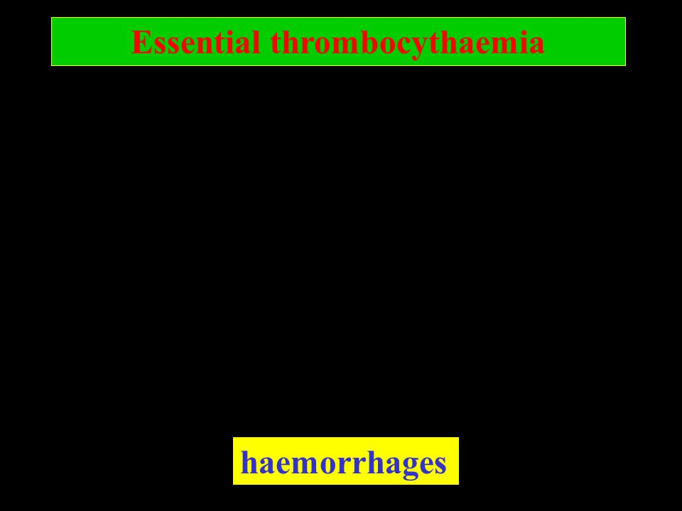 Essential thrombocythaemia haemorrhages