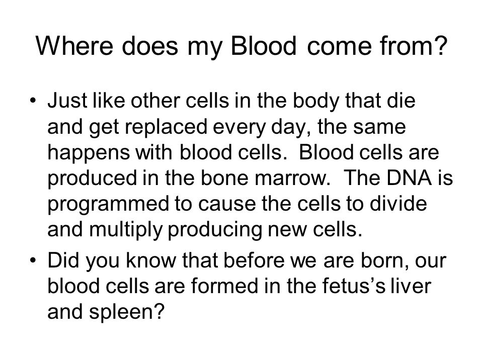 Where does my Blood come from.