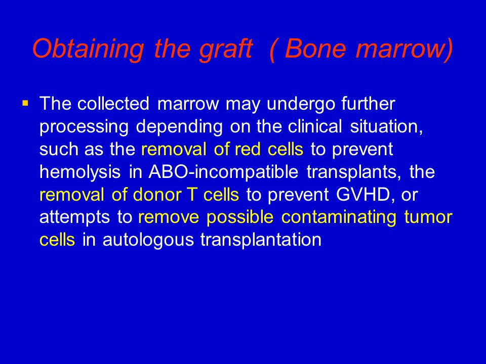 Obtaining the graft ( Bone marrow)   The collected marrow may undergo further processing depending on the clinical situation, such as the removal of red cells to prevent hemolysis in ABO-incompatible transplants, the removal of donor T cells to prevent GVHD, or attempts to remove possible contaminating tumor cells in autologous transplantation