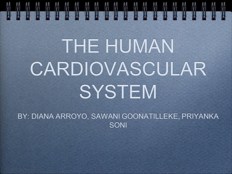 THE HUMAN CARDIOVASCULAR SYSTEM BY: DIANA ARROYO, SAWANI GOONATILLEKE, PRIYANKA SONI