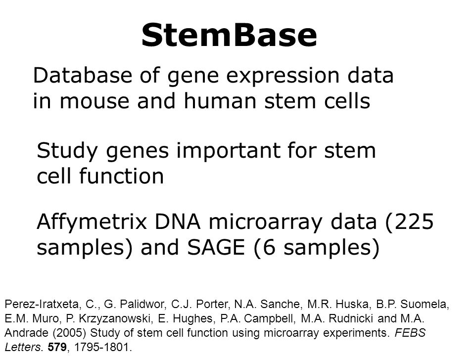 StemBase Database of gene expression data in mouse and human stem cells Affymetrix DNA microarray data (225 samples) and SAGE (6 samples) Study genes important for stem cell function Perez-Iratxeta, C., G.