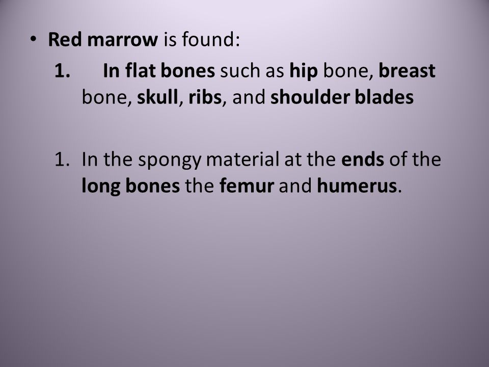 Red marrow is found: 1.In flat bones such as hip bone, breast bone, skull, ribs, and shoulder blades 1.In the spongy material at the ends of the long