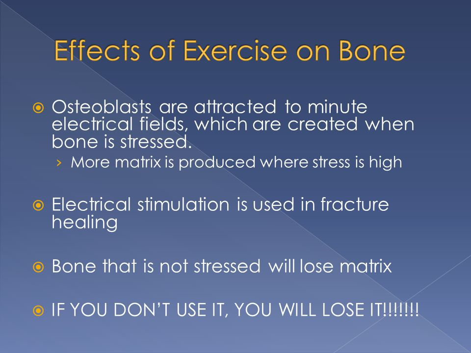 Osteoblasts are attracted to minute electrical fields, which are created when bone is stressed. › More matrix is produced where stress is high  Ele