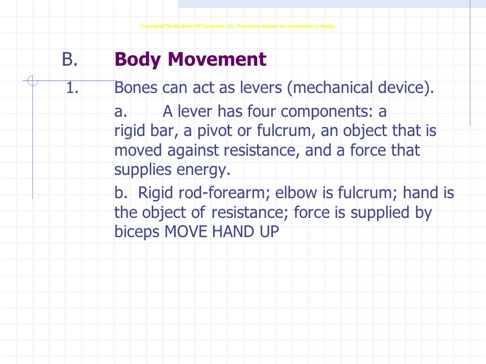 B.Body Movement 1.Bones can act as levers (mechanical device). a.A lever has four components: a rigid bar, a pivot or fulcrum, an object that is moved