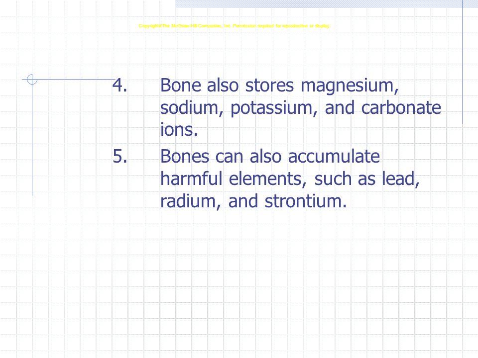 4.Bone also stores magnesium, sodium, potassium, and carbonate ions. 5.Bones can also accumulate harmful elements, such as lead, radium, and strontium