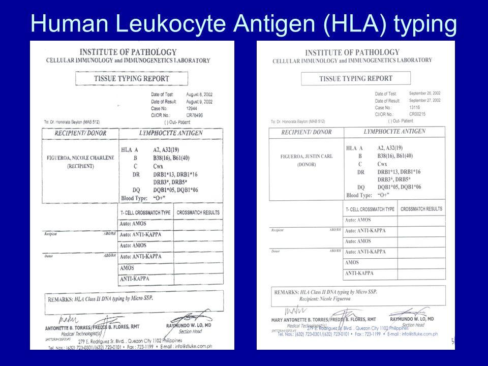 Human Leukocyte Antigen (HLA) typing