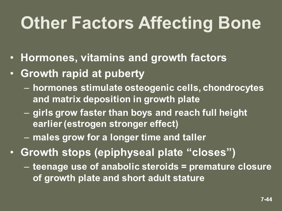 7-44 Other Factors Affecting Bone Hormones, vitamins and growth factors Growth rapid at puberty –hormones stimulate osteogenic cells, chondrocytes and