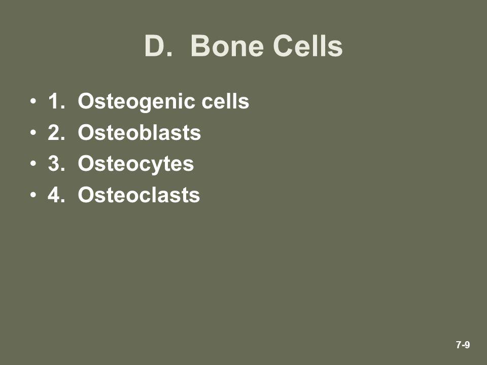 D. Bone Cells 1. Osteogenic cells 2. Osteoblasts 3. Osteocytes 4. Osteoclasts 7-9