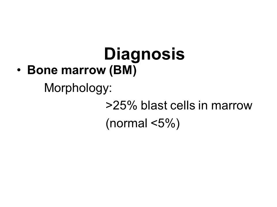 : Diagnosis Bone marrow (BM) Morphology: >25% blast cells in marrow (normal <5%)