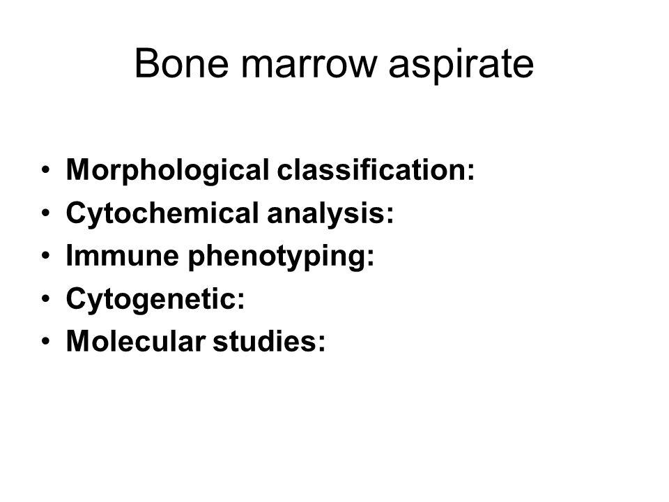 Bone marrow aspirate Morphological classification: Cytochemical analysis: Immune phenotyping: Cytogenetic: Molecular studies: