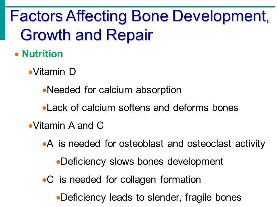 Factors Affecting Bone Development, Growth and Repair  Nutrition  Vitamin D  Needed for calcium absorption  Lack of calcium softens and deforms bo