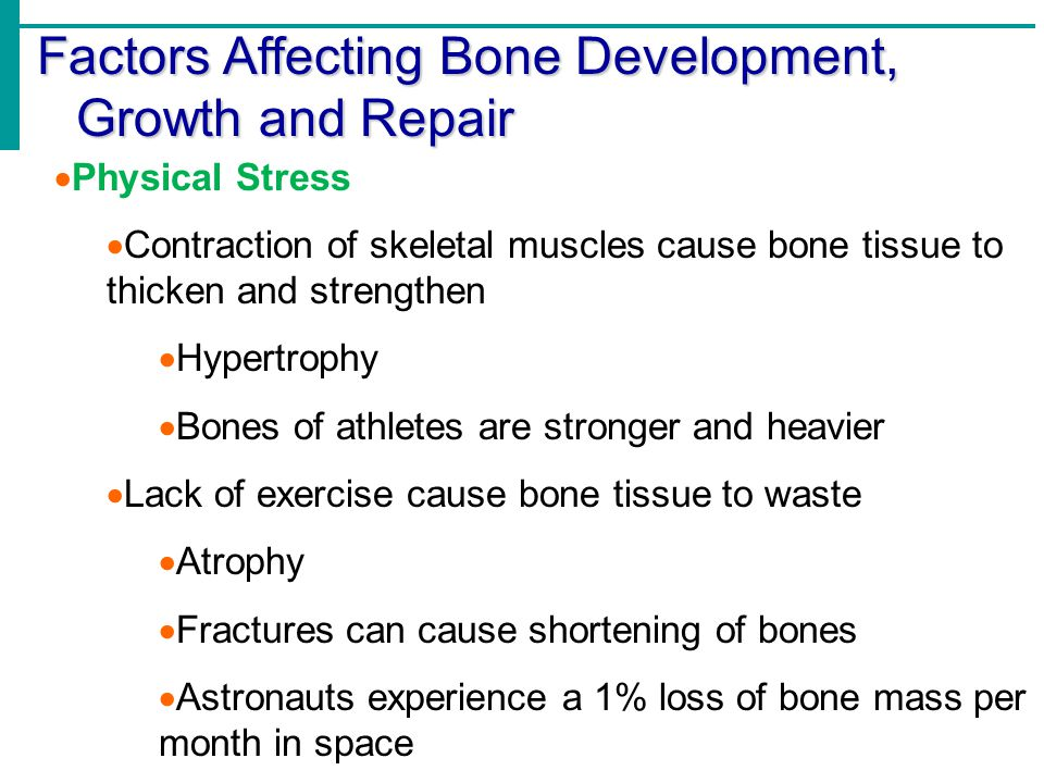 Factors Affecting Bone Development, Growth and Repair  Physical Stress  Contraction of skeletal muscles cause bone tissue to thicken and strengthen