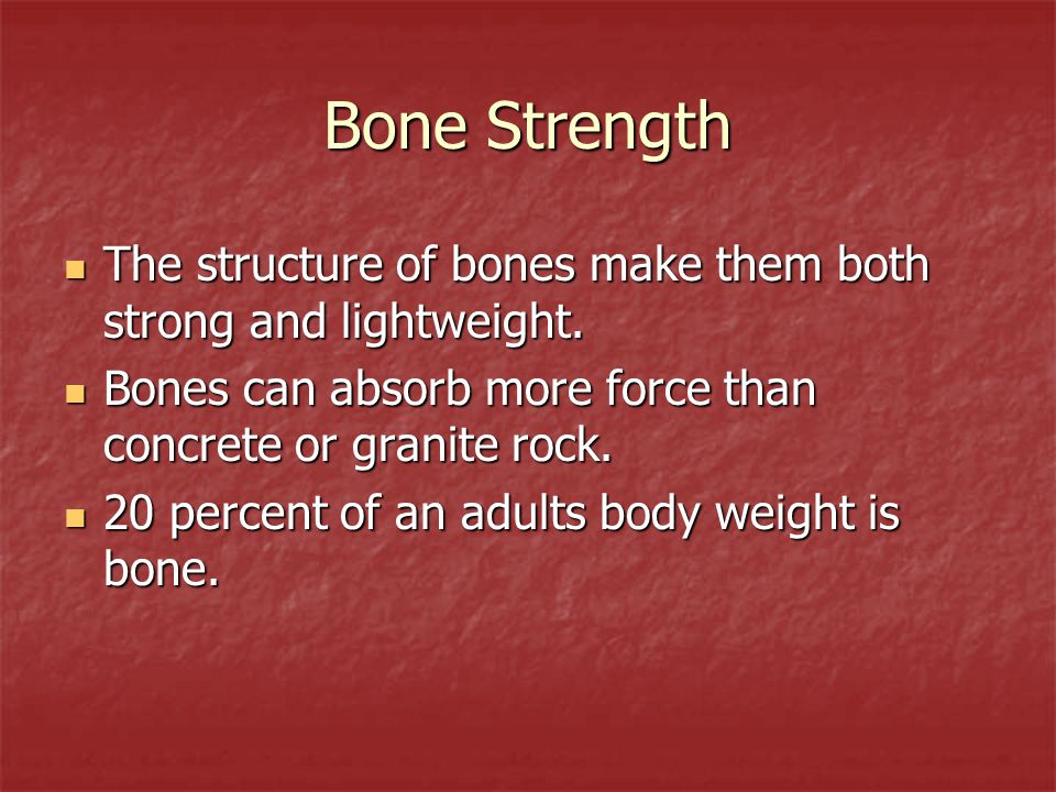 Bone Strength The structure of bones make them both strong and lightweight. The structure of bones make them both strong and lightweight. Bones can ab