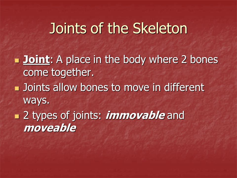 Joints of the Skeleton Joint: A place in the body where 2 bones come together. Joint: A place in the body where 2 bones come together. Joints allow bo