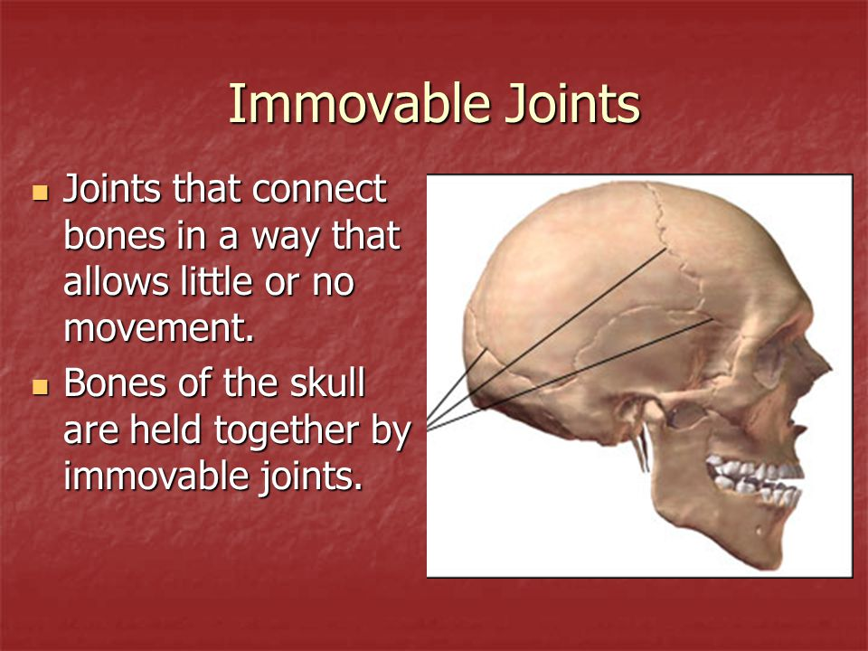 Immovable Joints Joints that connect bones in a way that allows little or no movement. Joints that connect bones in a way that allows little or no mov
