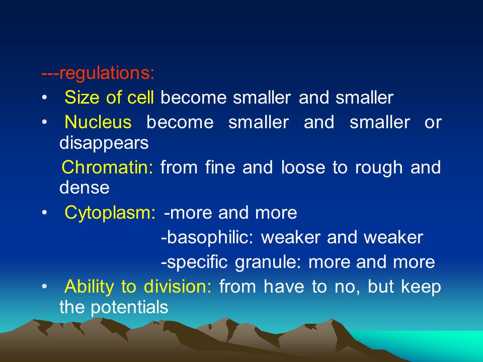 ---regulations: Size of cell become smaller and smaller Nucleus become smaller and smaller or disappears Chromatin: from fine and loose to rough and dense Cytoplasm: -more and more -basophilic: weaker and weaker -specific granule: more and more Ability to division: from have to no, but keep the potentials