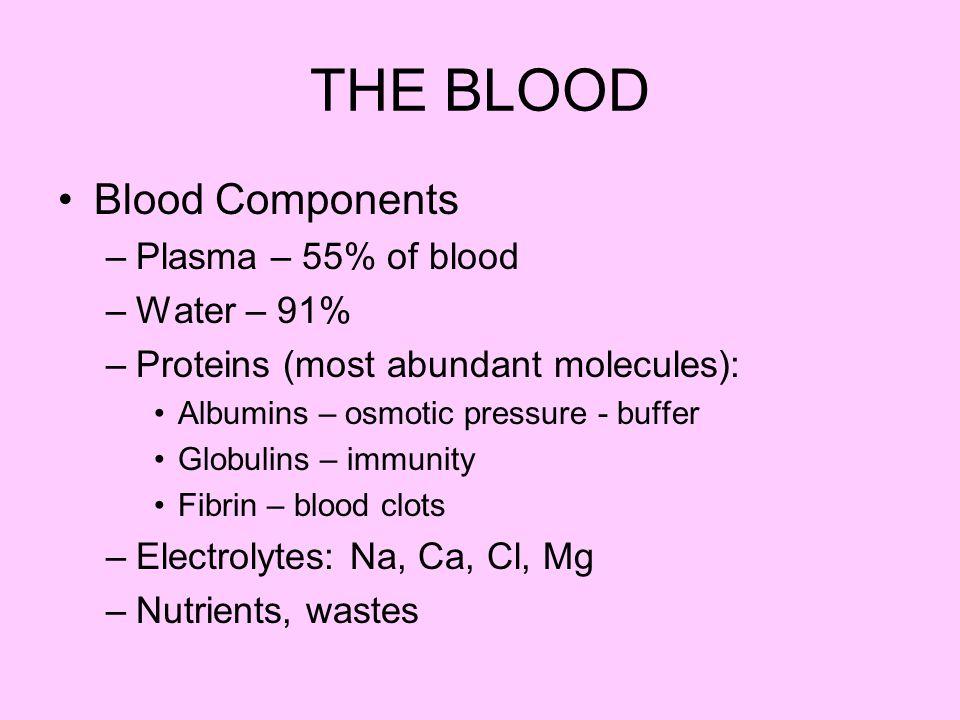 White blood cells –4,000 – 11,000 per cu.