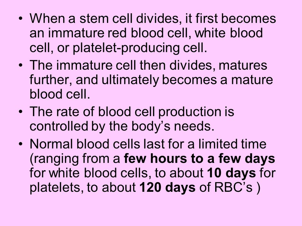 When a stem cell divides, it first becomes an immature red blood cell, white blood cell, or platelet-producing cell. The immature cell then divides, m